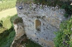 Ruines du château - Français:   une partie des ruines du Château d\'Aurignac, vu du donjon