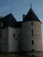 Château - Français:   La planète Jupiter au milieu de 2 tours du château de Châteauneuf sur Cher