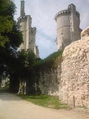 Château - Vue générale des deux tours du chateau