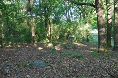Dolmen dit la Pierre couverte de Bué - Bagneux (Indre)  Les menhirs de Tréfoux (néolithique).   Ces deux petits menhirs sont au bord de la route. Le plus petit fait un peu moins d\'un mètre, le plus grand environ 1,10 mètre.