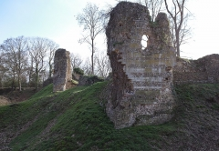 Ruines du château fort - English: The mediaeval castle of Montfort-sur Risle was built in the 11th century. The castle was destroyed in 1203.