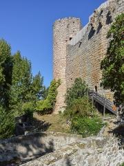 Ruines du château - Castle of Villerouge-Termenès, Aude, France