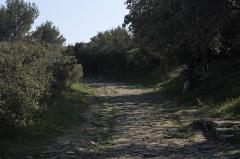 Via Domitia (également sur communes de Redessan et Jonquières-Saint-Vincent, dans le Gard, et Castelnau-le-Lez, dans l'Hérault) -  The climb to the upper town..
