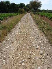 Via Domitia (également sur communes de Redessan et Jonquières-Saint-Vincent, dans le Gard, et Castelnau-le-Lez, dans l'Hérault) - English: Via Domitia in Pinet (Hérault - France)