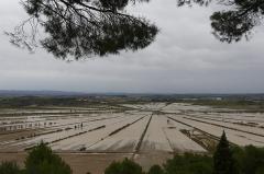 Oppidum d'Ensérune - Français:   L\'étang de Montady en octobre 2019