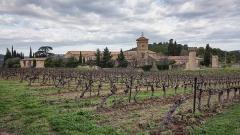 Ancien prieuré dit  château  de Cassan - Français:   Abbaye de Cassan. Commune de Roujan, Hérault, Occitanie, France.