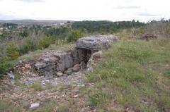 Dolmen du Buisson - Čeština:   Dolmen de la Marque Mas-Saint-Chely