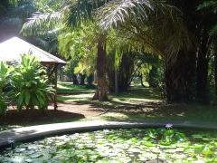 Muséum d'Histoire Naturelle -  Jardin de l'Etat, Saint-Denis