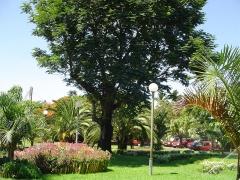 Muséum d'Histoire Naturelle -  Jardins de la mairie, Saint Pierre