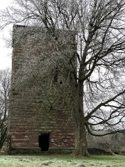 Ruines du château -  Château de Lutzelbourg