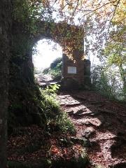 Ruines du château de Falkenstein -  Elsaß-Tour 2019-10-31 10 Chateau du Falkenstein