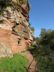 Ruines du château de Falkenstein -  Elsaß-Tour 2019-10-31 13 Chateau du Falkenstein