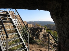 Ruines du château de Falkenstein -  Elsaß-Tour 2019-10-31 21 Chateau du Falkenstein