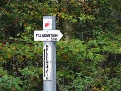 Ruines du château de Falkenstein -  Elsaß-Tour 2019-10-31 29 Chateau du Helfenstein