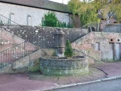Fontaine - Saint-Dié-des-Vosges: Fontaine du 18e siècle sur l'ancienne place du Chapitre. Inscrite aux monuments historiques en 1948.