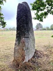 Menhir du Plessis-Gamat - English: Le Menhir du Plessis Gamat est en grès blanc très quartzeux. Haut de 2,60 m au dessus de la terre, il mesure 1,25 m de largeur, 0,35 d'épaisseur au nord et 0,50m vers le sud. Ses deux faces les plus larges regardent vers l'est et l'Ouest. Il est également connu sous les noms de Menhir du Quarteron de la Masure et de Menhir de Gamet. La légende veut que l'on déconseillait de l'approcher à minuit par pleine lune afin de ne pas troubler les rondes des lutins, des Korrigans et pour ne pas être pris à partie par les fée. Ce monument fait partie de l'important patrimoine mégalithique de Saint-Brevin-les-Pins constitué de dolmens et de menhirs. Construits pendant la période néolithique, leur datation est estimée entre les V ième et III ième millénaires avant notre ère.