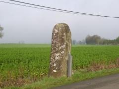 Menhir dit du Faix du Diable - Français:   Le menhir.