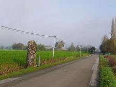 Menhir dit du Faix du Diable - Français:   Le menhir vu de la route.