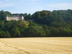 Château de Courtanvaux - Français:   Vue d\'ensemble