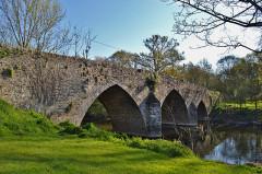 Pont de Sénard sur la Maine - English: Saint-Hilaire-de-Loulay