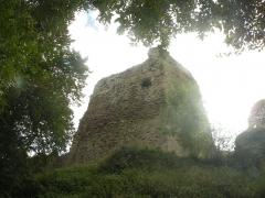 Château - Château de Talmont-Saint-Hilaire