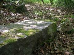 Polissoir - Français:   Polissoir néolithique sur la rive droite du Laizon à Bons-Tassilly (Calvados)