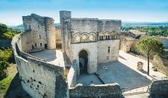Château des Adhémar ou des Papes - Français:   Château de Montélimar, vue d\'ensemble