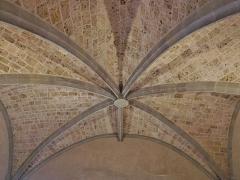 Château des Ducs de Savoie - English:  Sight of the ceiling vault of the Tour Trésorerie tower of Chambéry's castle, in Savoie, France.