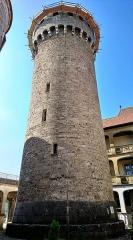 Château de Montrottier - English:   Tower of the Montrottier Castle in August 2019. Lovagny, France.