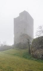 Château de Chanac - English: Castle of Chanac, Lozère, France