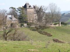 Château de la Pèze - Français:   Vue du château de la Pèze dans son environnement