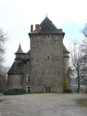 Château de la Pèze - Français:   Vue sur le donjon primitif du château de la Pèze à Savignac (Aveyron)
