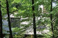 Ermitage de Saint-Rouin, puis chapelle de pèlerinage - Français:   La chapelle à travers les arbres.
