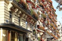Hôtel Plaza-Athénée -  Champs-Elysées | Avenue Montaigne