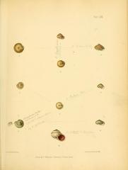 Ancienne grange d'Outre-Aube -    ^w   ^   Plate CM.   //. ^V-.^ J/.n-i^-   -9   .^ v^r   1.   ^1   M