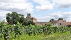 Château de Corton-André - This building is indexed in the Base Mérimée, a database of architectural heritage maintained by the French Ministry of Culture,under the reference PA21000090 .