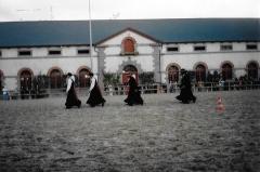Haras national - Français:   Présentation de danse bretonne au Haras national de Lamballe, Côtes-d\'Armor, Bretagne, France