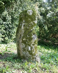 Menhir de Woinville - Deutsch: Menhir in Woinville (Gemeinde Buxières-sous-les-Côtes, Dep. Meuse, Frankreich)