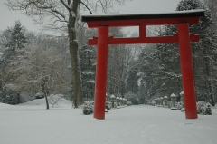 Ancien sanatorium, faisant partie du centre hospitalier du Vexin, sis dans le parc de la Bucaille - English: Photo of Aincourt's Japanese garden in winter