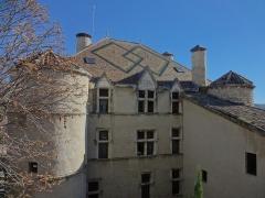 Château -  Façade ouest du château de Château-Arnoux (qui abrite la mairie). Toit en tuiles vernissées.