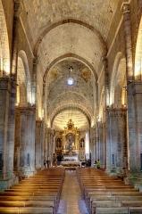 Ancienne cathédrale Notre-Dame - Intérieur de la cathédrale Notre-Dame-des-Pommiers à Sisteron, Alpes de Haute Provence, France
