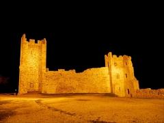 Château -  Ruines du chateau d'Hyères