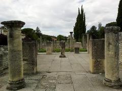 Site archéologique de la Villasse -  Vaucluse Vaison-La-Romaine Ruines Romaines Maison Buste Argent