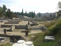 Site archéologique de la Villasse -  Vaison