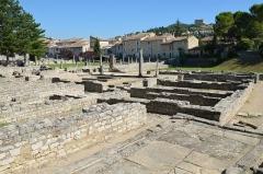 Site archéologique de la Villasse -  A large Domus at La Villasse, the Dolphin House (2700 m2) Vasio Vocontiorum, Vaison-la-Romaine