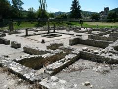Site archéologique de la Villasse -  Dolphin house in Vaison-la-Romaine