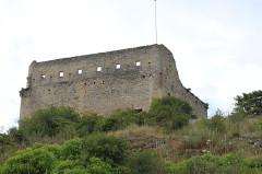 Château (ruines) et rocher qui les porte -  Vaison-la-Romaine, Vaucluse, France
