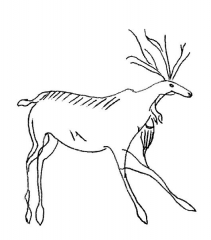 Grotte de Lascaux - English:   Thirteen lines flank this 6-1/2 foot high stag. These markings may signify the lead up period of the lunar month from the crescent moon to the full moon when this large mammal groups.