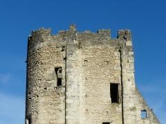 Château Barrière - Le sommet de la tour sud du château Barrière, Périgueux, Dordogne, France.