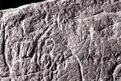 Gisement préhistorique de la Madeleine - Français:   Gravure sur plaquette de schiste de la Madeleine en Dordogne, France. Il s\'agit de la représentation d\'un lynx.